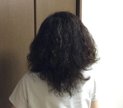 くせ毛の私の後ろ姿